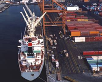 Inspections at Container Terminals and Ports